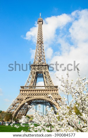 Eiffel Tower  with spring white blooming flowers, Paris, , France - stock photo