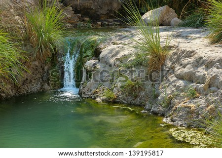 Ein Gedi nature reserve off the coast of the Dead Sea. - stock photo