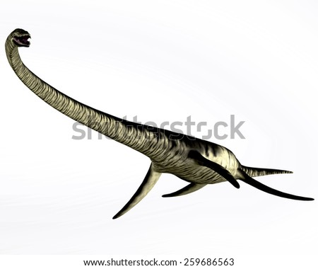 Elasmosaurus Reptile on White - Elasmosaurus was a plesiosaur marine reptile that lived in the Cretaceous Period of Kansas in North America. - stock photo