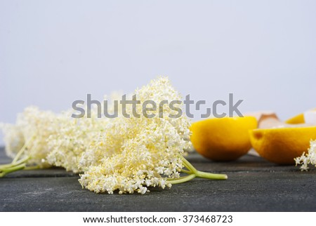 elder flower juice ingredients on  black wood table background - stock photo