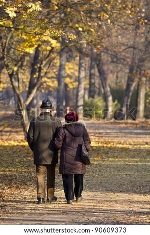 elderly couple posing at park - stock photo