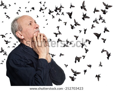 Elderly man looking up on sky with flying birds - stock photo