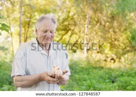 elderly men with chick - stock photo