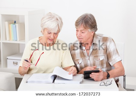 Elderly Woman Checking The Accounts While The Husband Adds Up The Figures On The Calculator - stock photo