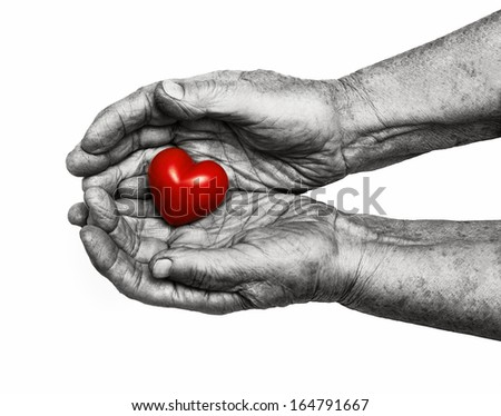 Elderly woman holding red heart in her palms, symbol of care and love, isolated on white background - stock photo