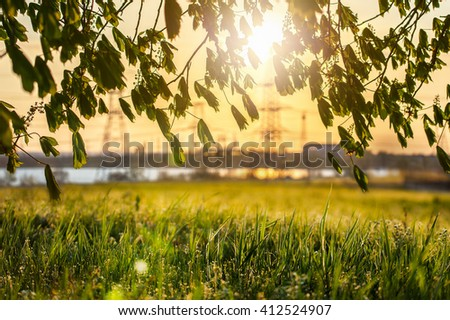 electric lines in nature against the backdrop of the setting sun - stock photo