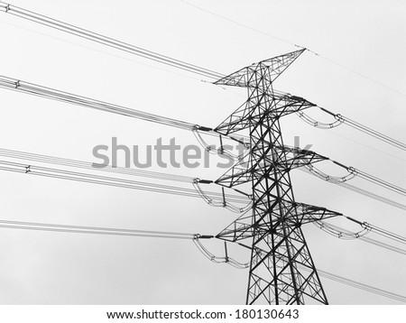 Electricity poles - stock photo