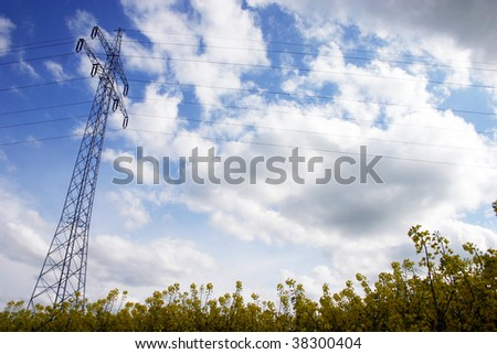 Electricity tower inside a rapeseed field - stock photo