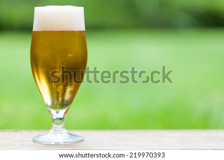Elegant glass of cold refreshing beer, draft or lager with a frothy white head on a table outdoors in the garden, close up side view - stock photo