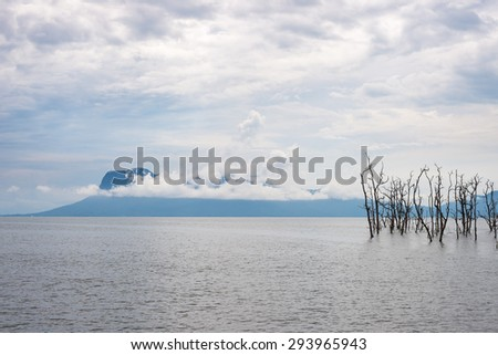 Elegant shoreline and dramatic sky during high tide from Bako National Park, West Sarawak, Borneo, Malaysia. - stock photo