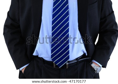 Elegant well-dressed businessman - stock photo