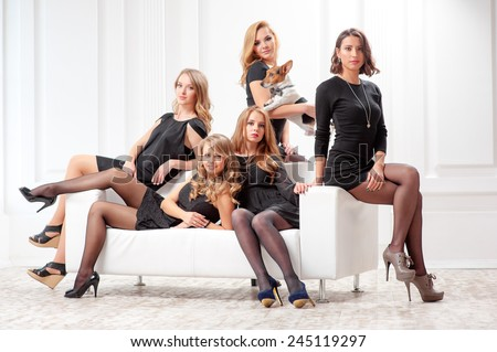 elegant women's team. Group portrait of 5th attractive caucasian female colleagues wearing black dresses sitting on the white sofa with a little dog - stock photo