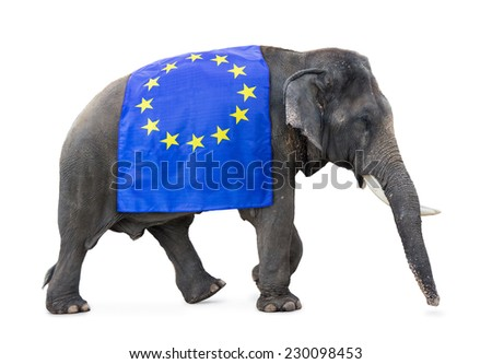 elephant carries a flag EU,  isolated on white background   - stock photo