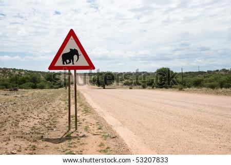 Elephant crossing - stock photo