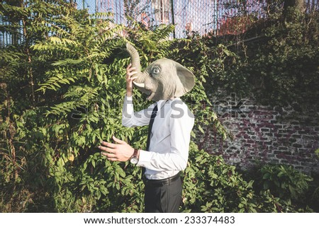 elephant mask young handsome elegant blonde model man in the city - stock photo