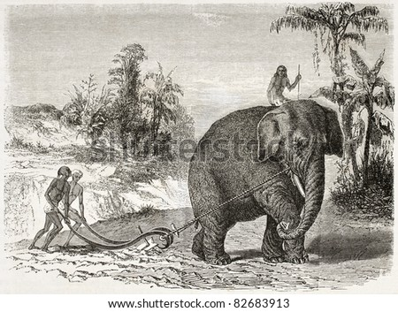 Elephant ploughing old illustration, Ceylon (nowadays Sri Lanka). Created by Therond and Huyot after Andrasy, published on Le Tour du Monde, Paris, 1860 - stock photo