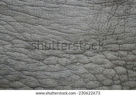 Elephant skin texture background - stock photo