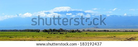 Elephants family on African savanna. Safari in Amboseli, Kenya, Africa  - stock photo