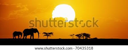 Elephants silhouetted at sunset on horizon - stock photo