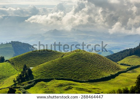 Emerald hills of Azores. - stock photo