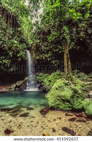 Emerald pool on the island of Dominica with waterfall - stock photo