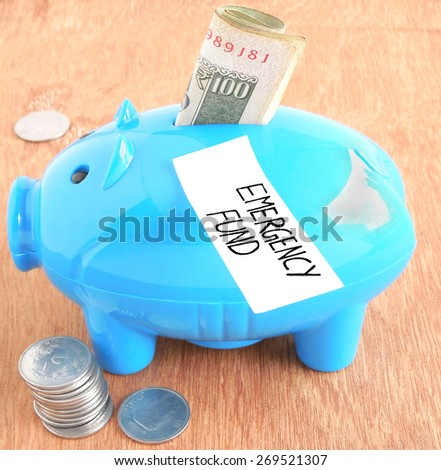 Emergency fund in piggy bank concept. - stock photo