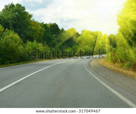 Empty asphalt road in forest - stock photo