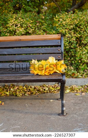 Empty bench with bouquet of leaves in autumn park. Vertical view - stock photo