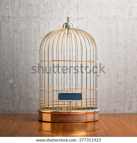 Empty bird golden cage on the table - stock photo