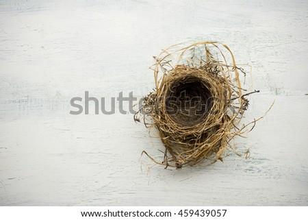 Empty bird nest on white washed wood surface - stock photo