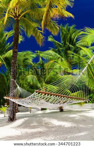 Empty hammock in a shade fo palm trees on Rarotonga, Cook Islands - stock photo