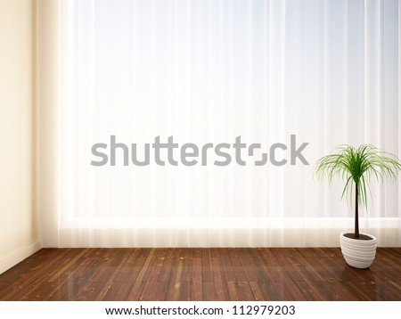 empty interior with a palm tree and curtain - stock photo