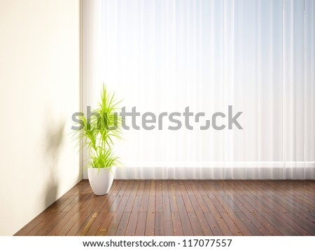 empty interior with a plant - stock photo