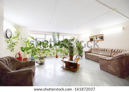 Empty light hall with plants growing in pots, a sofa and armchair - stock photo