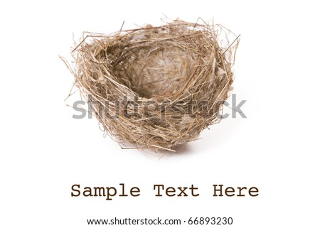 Empty nest isolated on white with space for text - stock photo