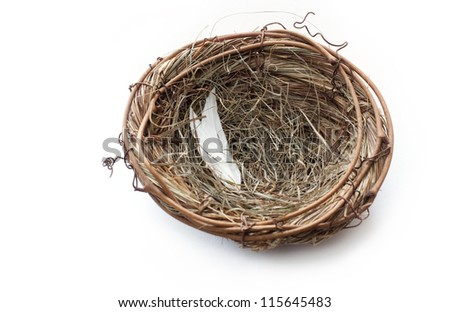 Empty Nest on white background - stock photo