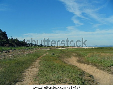 Empty path to the beach on Cape Cod - stock photo