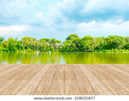 Empty perspective room with lagoon at forest and blue sky and wooden plank floor,Template mock up for display of your product - stock photo