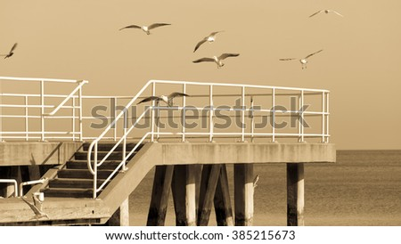 Empty pier jetty at the baltic sea and  birds flying above water surface. Nature landscape, sepia tone - stock photo