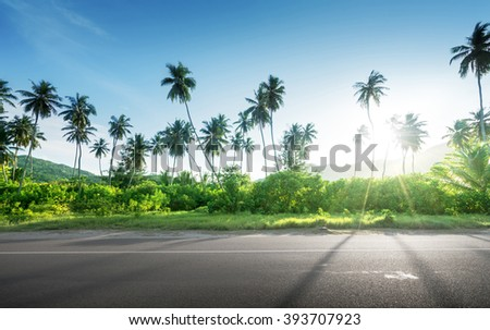 empty road in jungle of Seychelles islands - stock photo