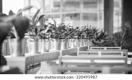 Empty Room in city black and white vintage retro - stock photo