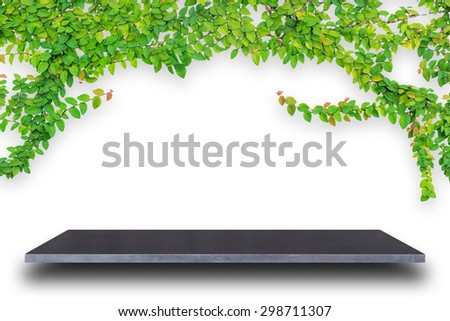 Empty top of natural stone shelves and green pattern wall background. For product display - stock photo