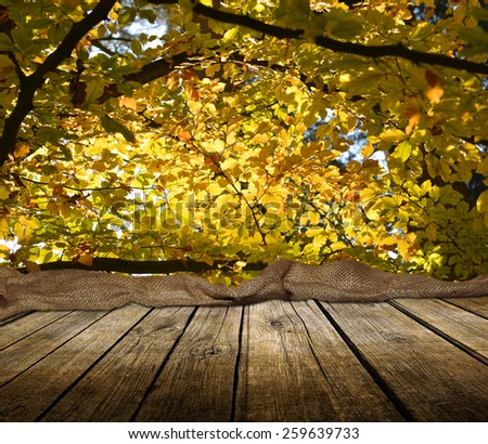 Empty wooden deck table with autumn forest background. Ready for product display montage.  - stock photo