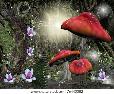 Enchanted romantic forest - stock photo