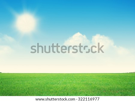 Endless green grass field and blue sky with clouds background - stock photo