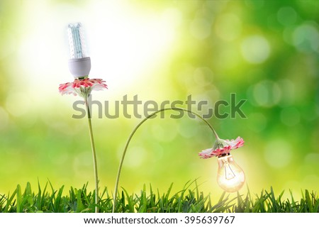 Energy efficiency lighting bulbs environmental conservation with flowering bulbs in nature background. Horizontal composition. Front view - stock photo