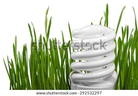Energy, Electricity, Light Bulb. - stock photo