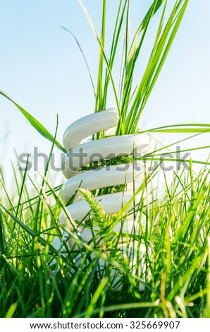 energy saving bulb in green grass - stock photo
