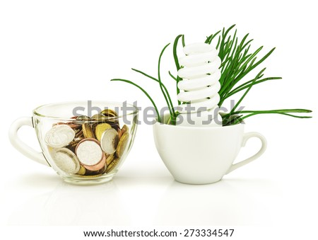 Energy-saving lamp, money, grass, cup isolated on white background - stock photo