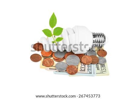 Energy saving light bulb, money and plant on white - stock photo